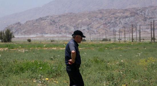 هجوم ملخها به استان هرمزگان